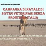 Foto Articolo_Sito